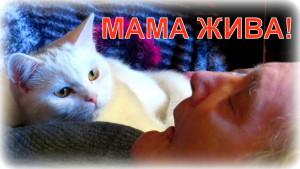 Мама жива: инсульт
